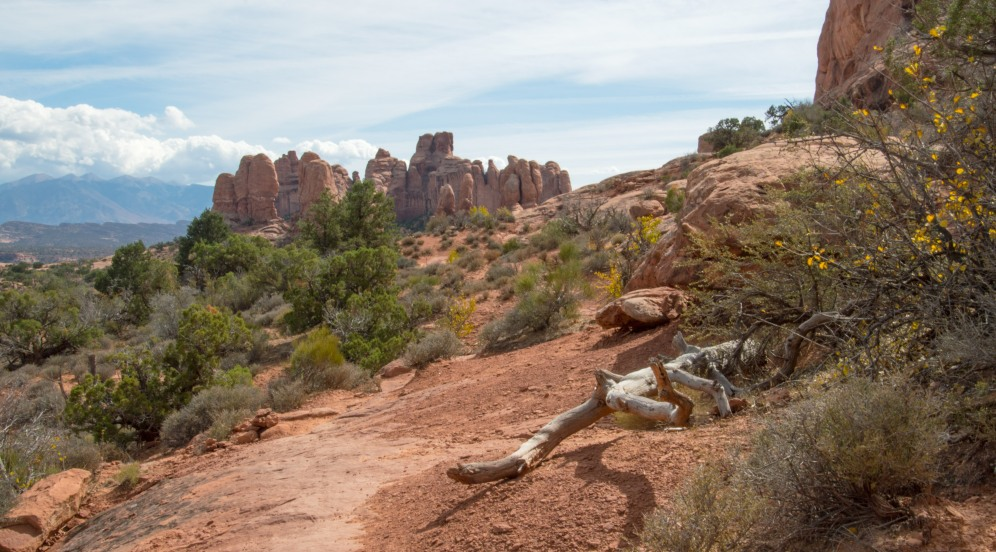 2016-oct-arches-nat-park_10-12-16_6142