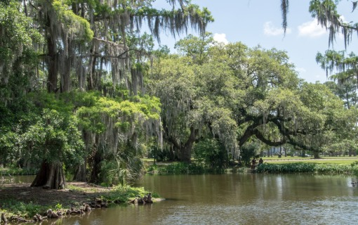 2017 April New Orleans and Houmas House Plantation_04 20 17_0260_edited-1