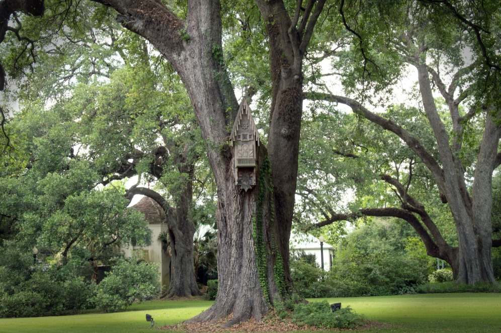2017 April New Orleans and Houmas House Plantation_04 22 17_0060