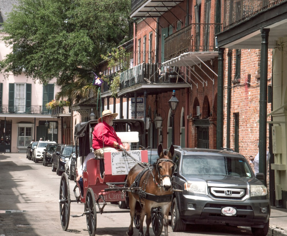2017 April New Orleans_04 19 17_9921_edited-1