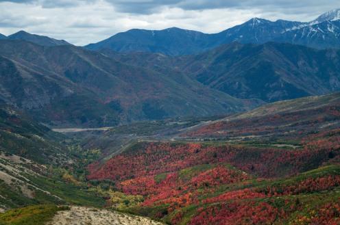 2017 September Alpine Loop Heber Utah_09 28 17_3552_edited-1