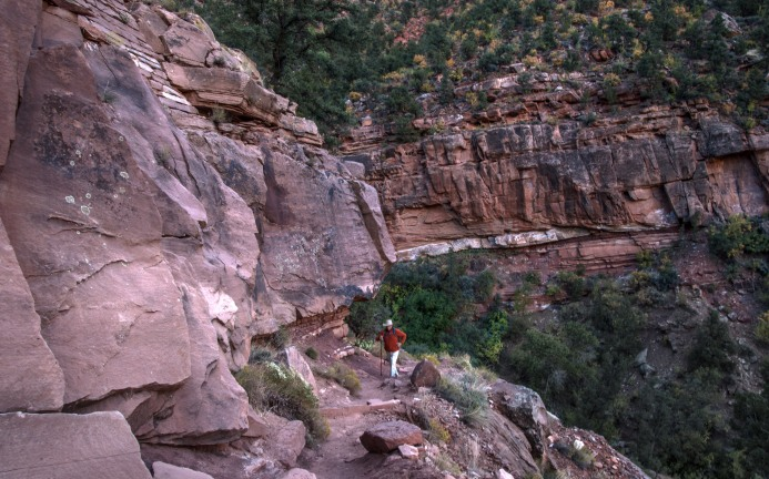 2017 Oct. Zion day 2 & Wildcat Canyon_10 05 17_4318_edited-1