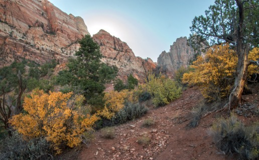2017 Oct. Zion day 2 & Wildcat Canyon_10 05 17_4381_edited-1
