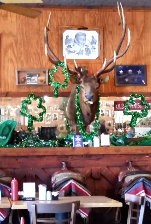 """The """"Happy St. Patricks Day"""" ...Elk??"""
