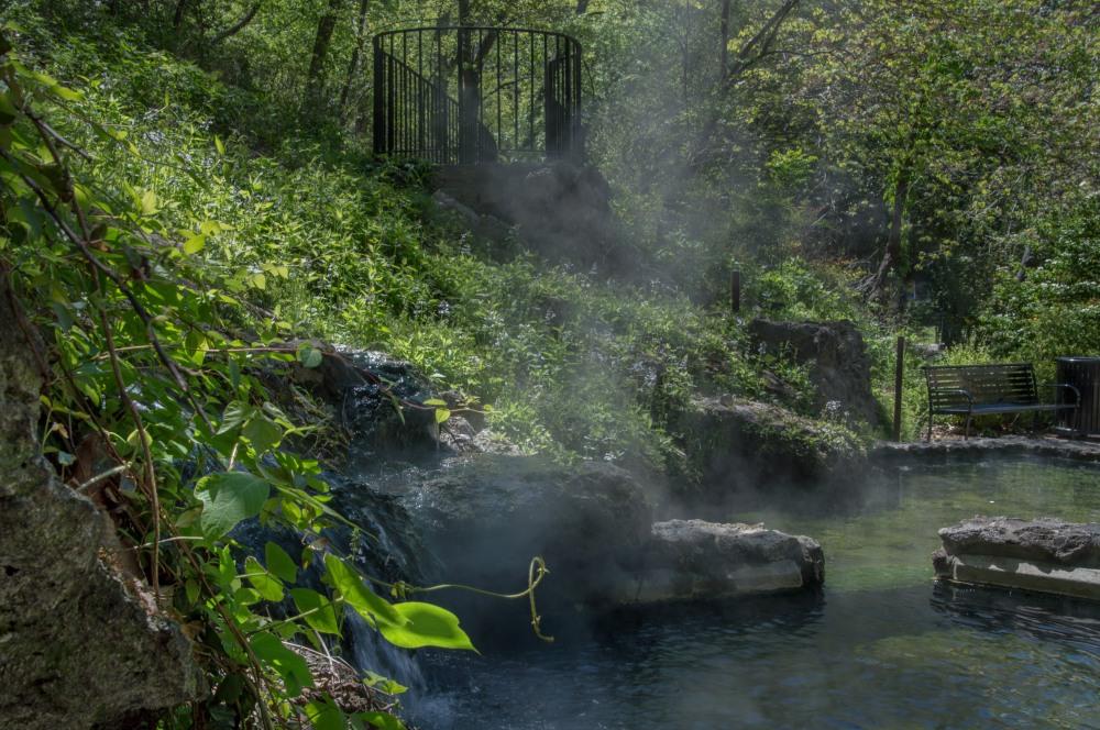 2018 April Hot Springs & Garvan Woodland Gardens_04 20 18_6400_edited-1