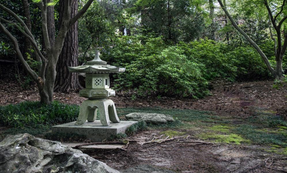 2018 April Hot Springs & Garvan Woodland Gardens_04 20 18_6437_edited-1