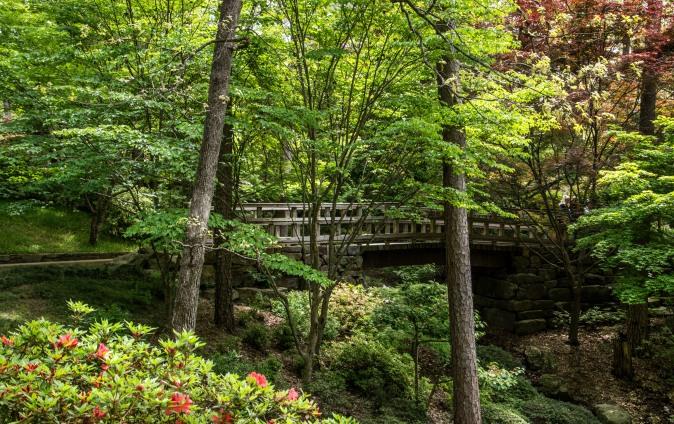 2018 April Hot Springs & Garvan Woodland Gardens_04 21 18_6221_edited-1